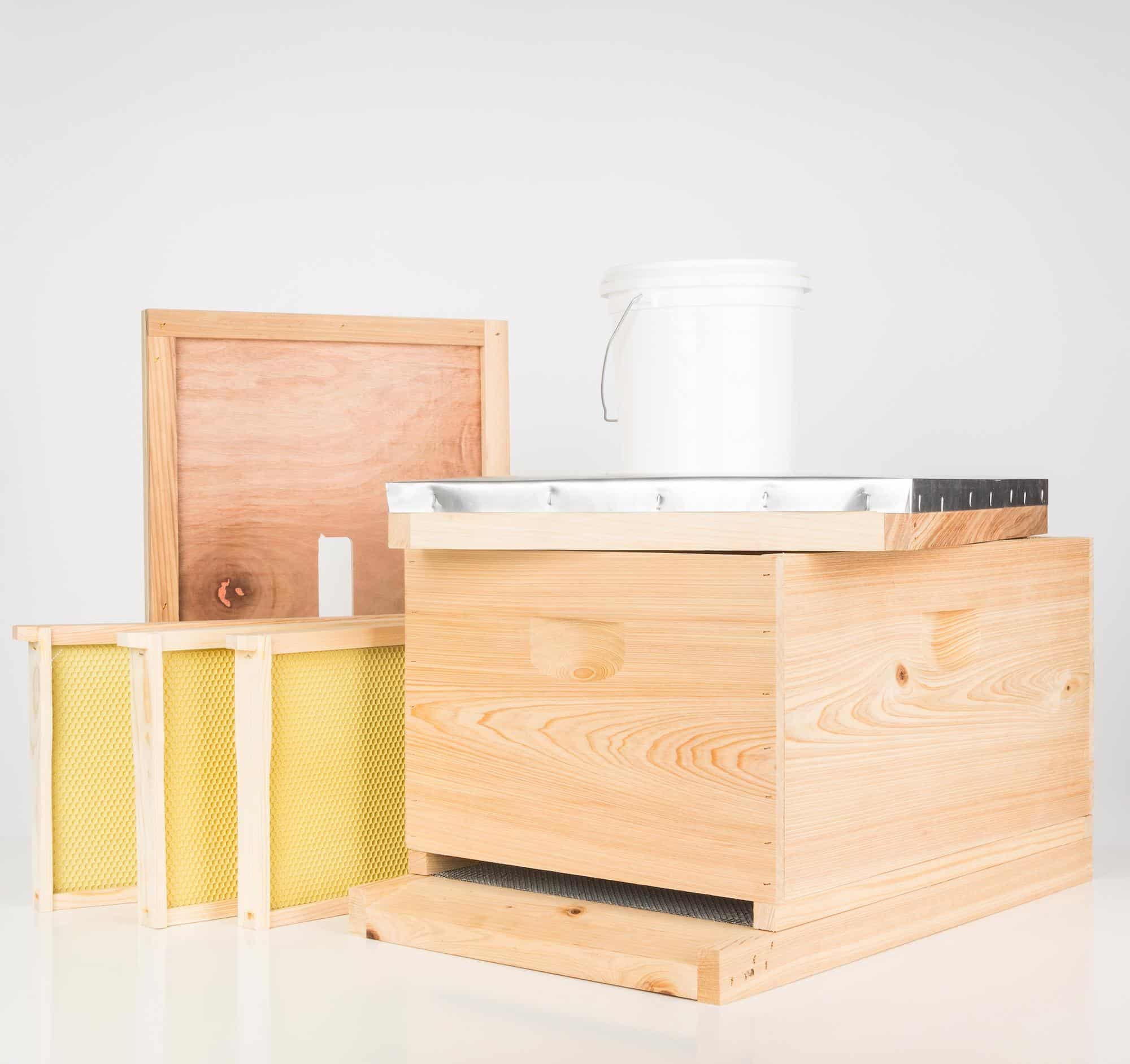 beekeeping starter kit