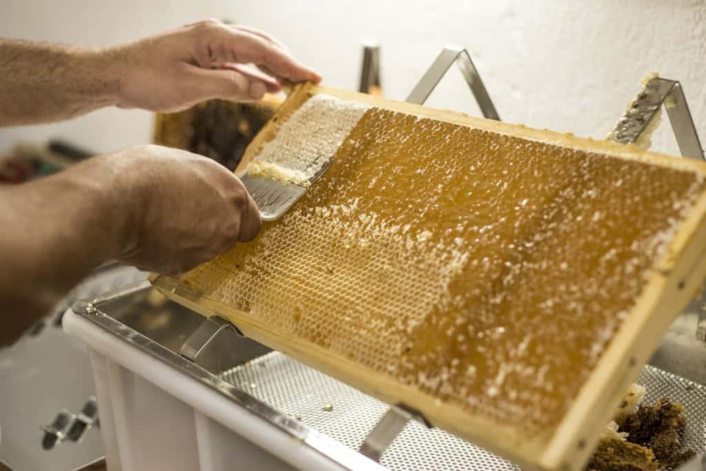 Uncap the Honey
