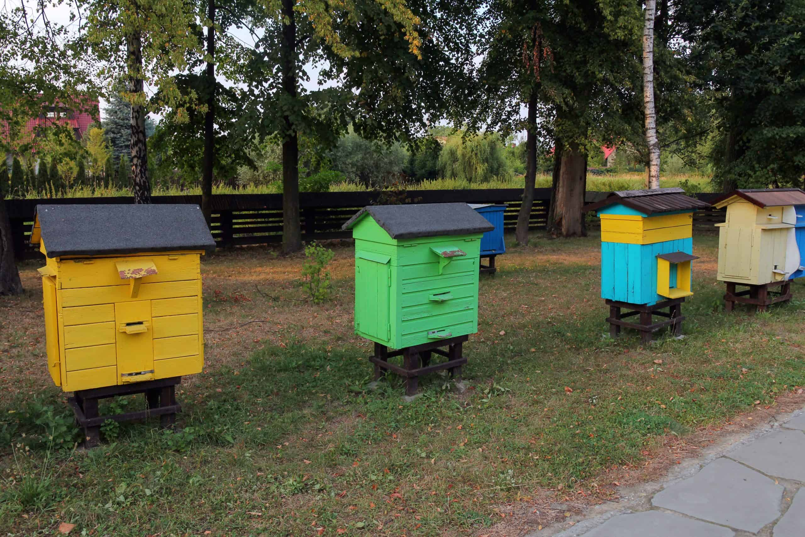 The Best Mason Bee Houses